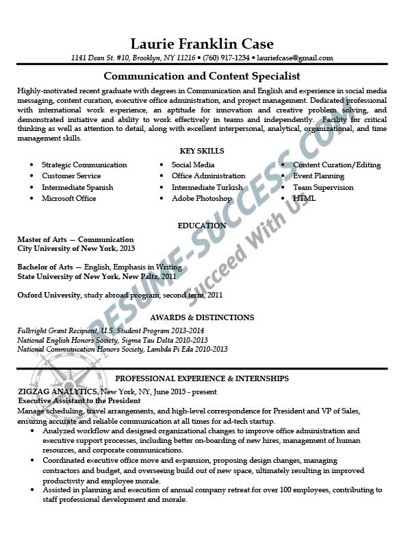 Sample resumes resume success for Sample resume for mid level position